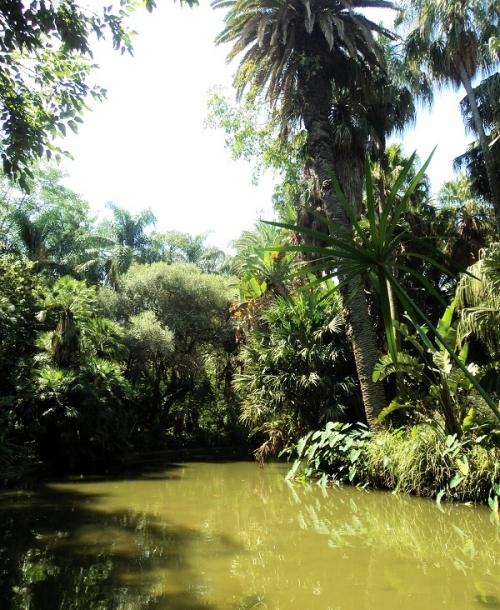 jardin dessai