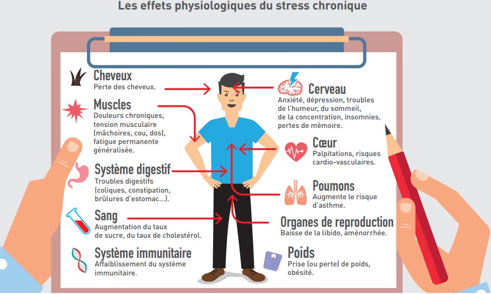 les effets du stress sur notre corps