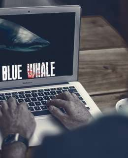 blue-whale_challenge_algérie