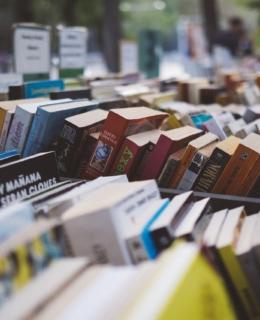 lire lecture algériennes